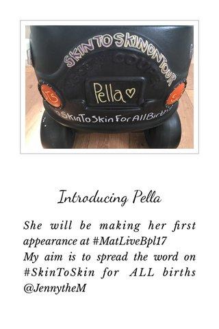 Introducing Pella
