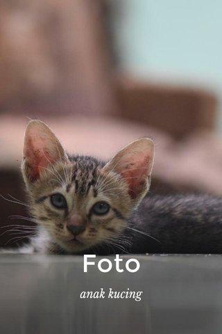 Foto anak kucing