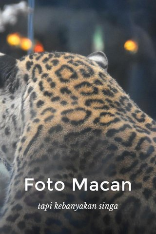Foto Macan tapi kebanyakan singa