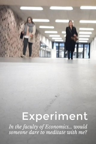 Experiment In the faculty of Economics... would someone dare to meditate with me?