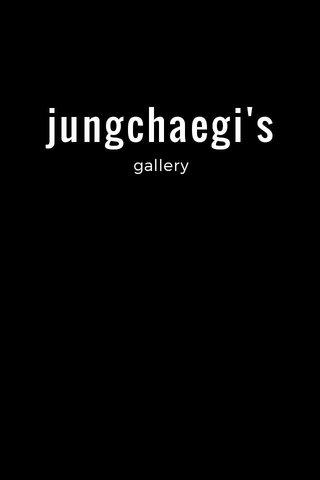 jungchaegi's gallery