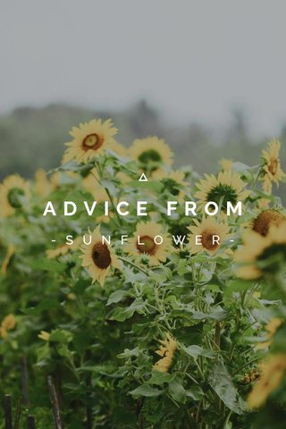 ADVICE FROM -SUNFLOWER-