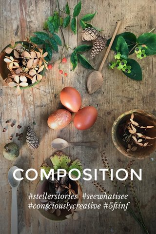 COMPOSITION #stellerstories #seewhatisee #consciouslycreative #5ftinf
