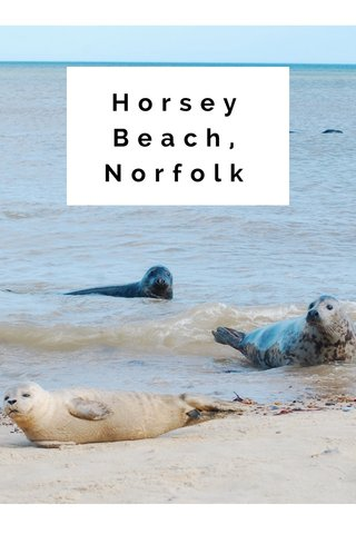 Horsey Beach, Norfolk
