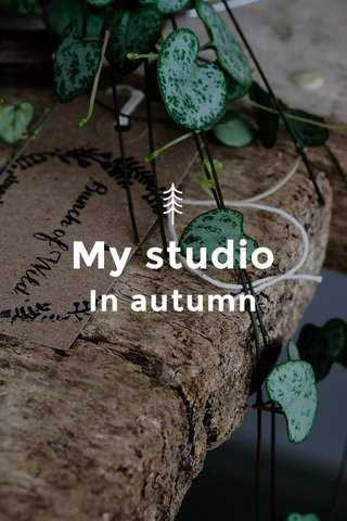 My studio In autumn