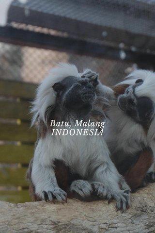 Batu, Malang INDONESIA