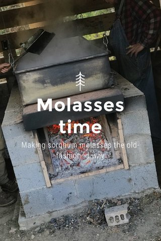 Molasses time Making sorghum molasses the old-fashioned way