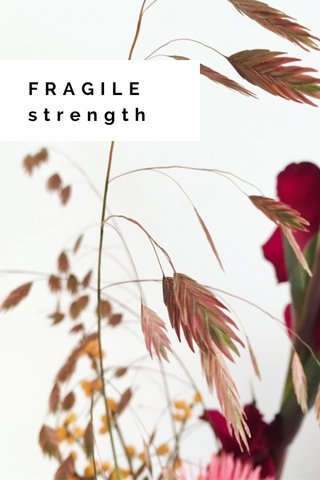 FRAGILE strength