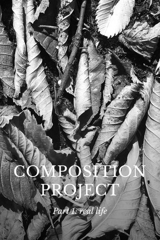 COMPOSITION PROJECT Part 1: real life