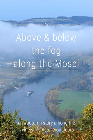 Above & below the fog along the Mosel an #autumn story among the #vineyards #stelleroutdoors