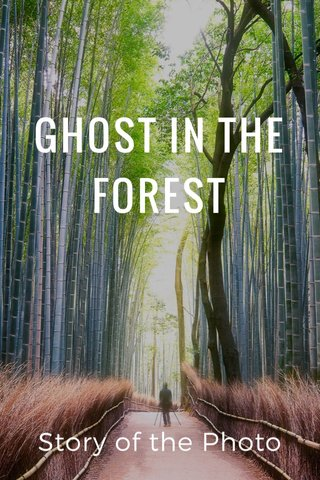 GHOST IN THE FOREST Story of the Photo