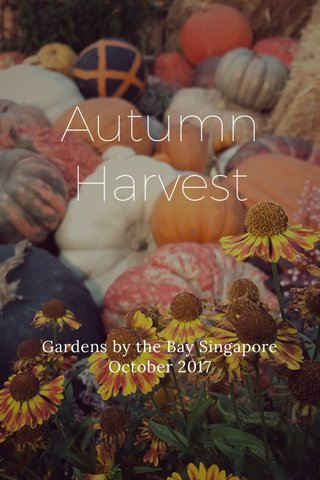 Autumn Harvest Gardens by the Bay Singapore October 2017