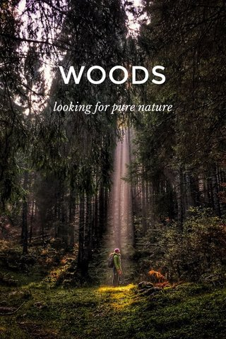 WOODS looking for pure nature