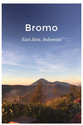 Bromo East Java, Indonesia