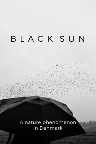 BLACK SUN A nature phenomenon in Denmark