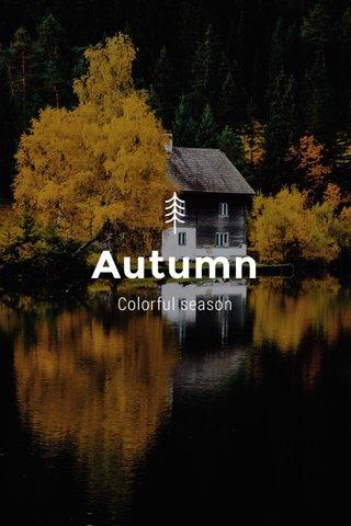 Autumn Colorful season