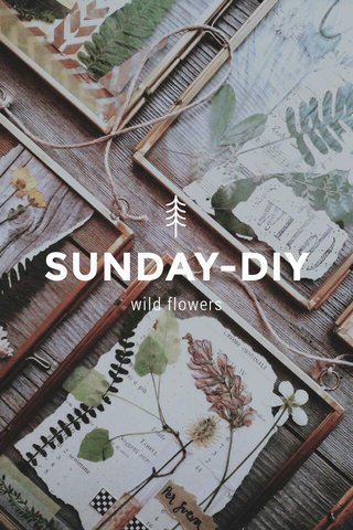 SUNDAY-DIY wild flowers