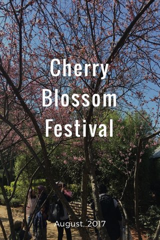 Cherry Blossom Festival August, 2017