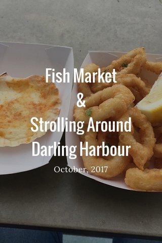 Fish Market & Strolling Around Darling Harbour October, 2017