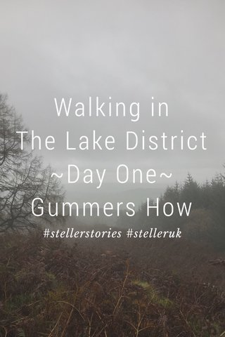 Walking in The Lake District ~Day One~ Gummers How #stellerstories #stelleruk