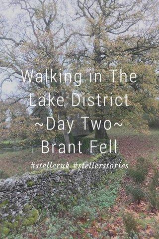 Walking in The Lake District ~Day Two~ Brant Fell #stelleruk #stellerstories