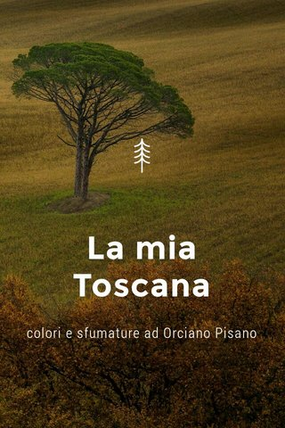La mia Toscana colori e sfumature ad Orciano Pisano