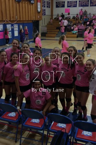 Dig Pink 2017 By Carly Lane