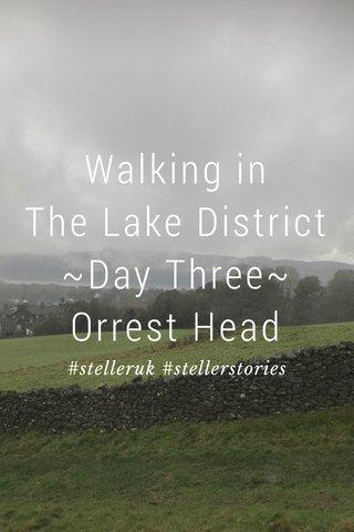Walking in The Lake District ~Day Three~ Orrest Head #stelleruk #stellerstories
