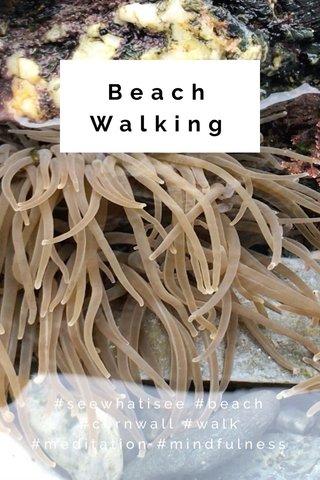 Beach Walking #seewhatisee #beach #cornwall #walk #meditation #mindfulness