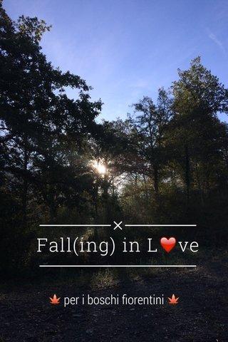 Fall(ing) in L❤️ve 🍁 per i boschi fiorentini 🍁