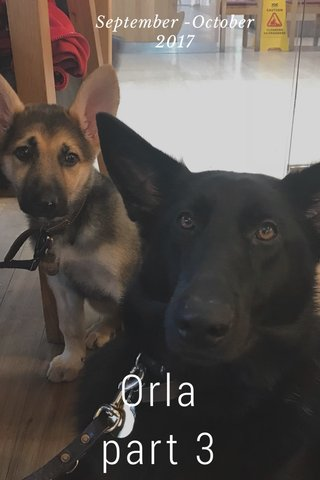 Orla part 3 September -October 2017
