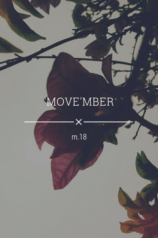 'MOVE'MBER m.18