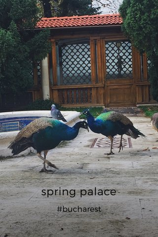 spring palace #bucharest