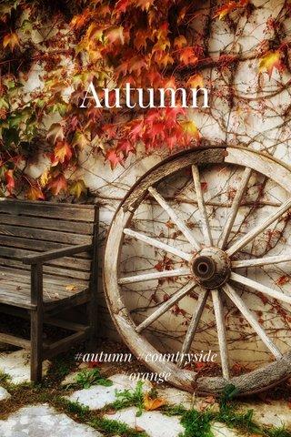 Autumn #autumn #countryside #orange