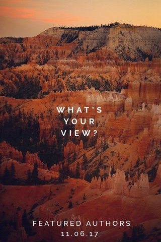 WHAT'S YOUR VIEW? FEATURED AUTHORS 11.06.17