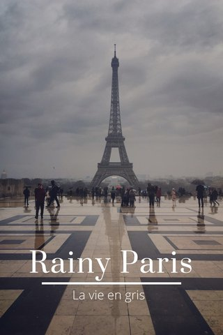 Rainy Paris La vie en gris
