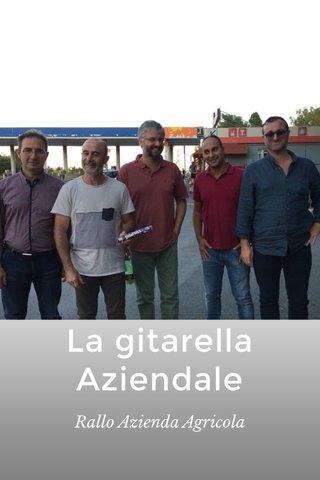 La gitarella Aziendale Rallo Azienda Agricola