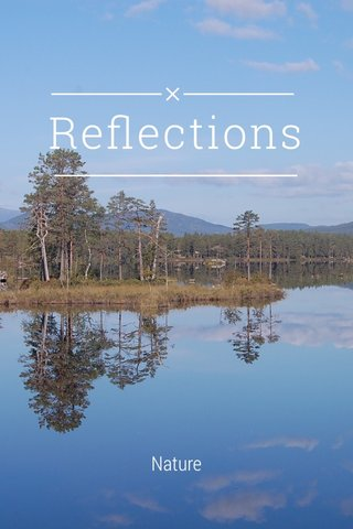 Reflections Nature