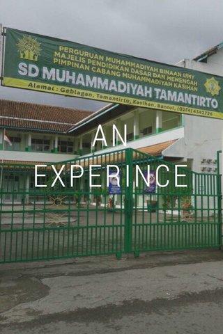 AN EXPERINCE