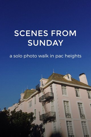 SCENES FROM SUNDAY a solo photo walk in pac heights