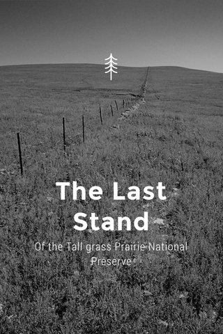 The Last Stand Of the Tall grass Prairie National Preserve