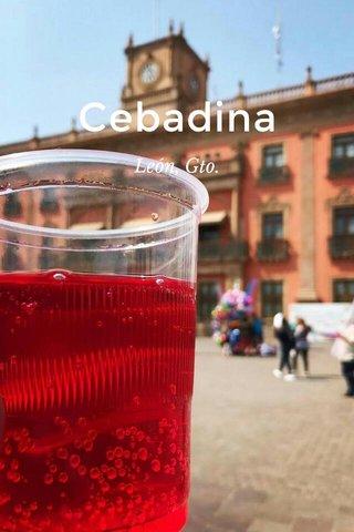 Cebadina León, Gto.
