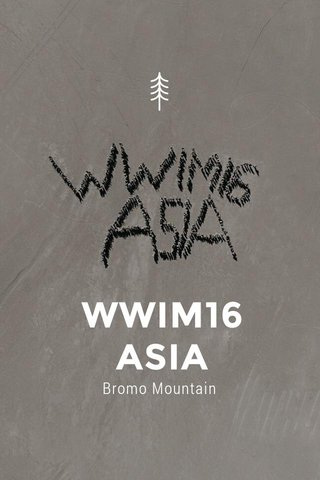 WWIM16 ASIA Bromo Mountain