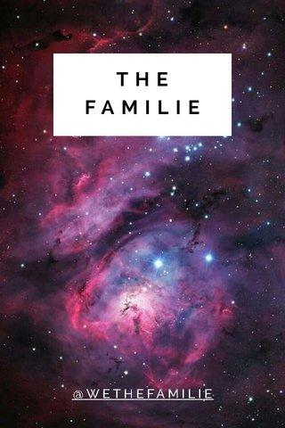 THE FAMILIE @WETHEFAMILIE