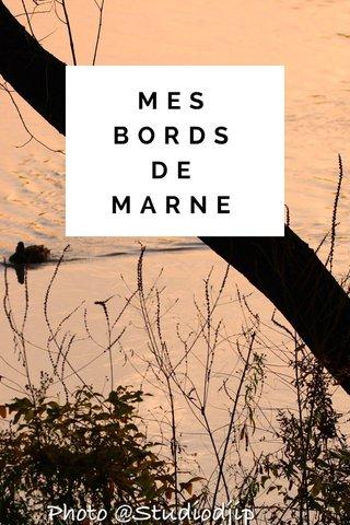 MES BORDS DE MARNE