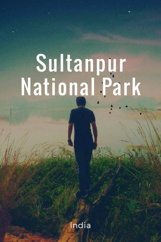 Sultanpur National Park India