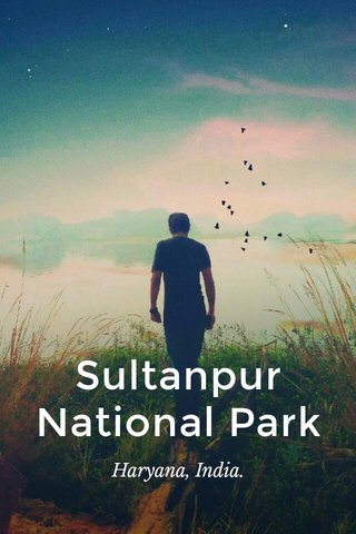 Sultanpur National Park Haryana, India.