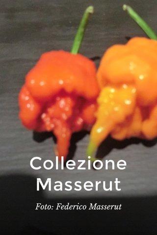 Collezione Masserut Foto: Federico Masserut