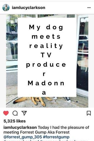 My dog meets reality TV producer Madonna GERMAN SHEPHERD #germany #dogs #puppy #servicedog #k9#miami #southmiami #florida #floridakeys #keywest #lafitness #gym #healthy #mentalhealth #selfhelp #germanshepherd