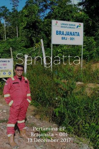 Sangatta Pertamina EP Brajanata - 001 13 December 2017